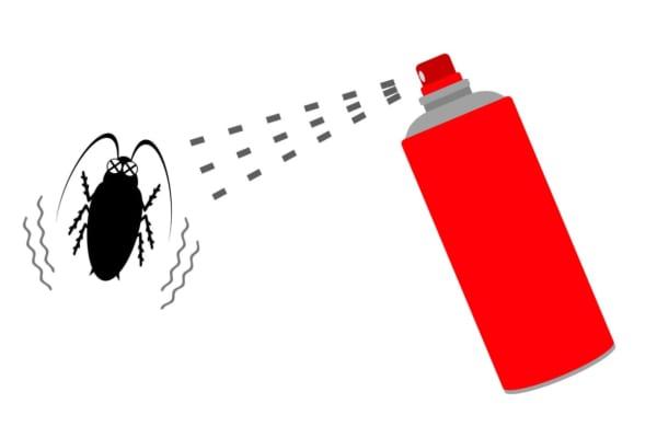 《2019年》ゴキブリ駆除・対策の完全版!卵や幼虫から退治する方法とは?