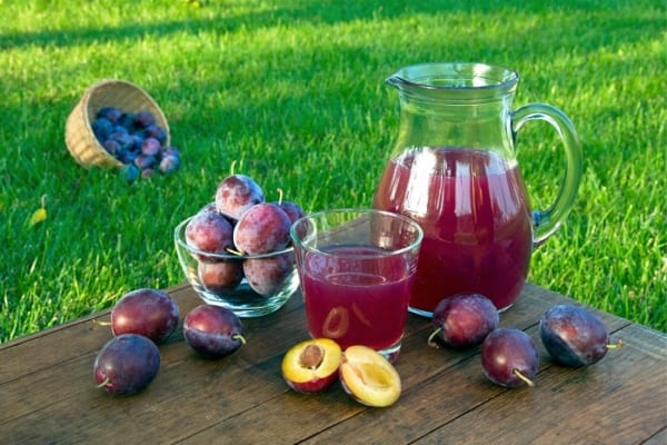 【今日は何の日?】肌トラブル解消!栄養豊富なプルーンを手軽に食べよう!