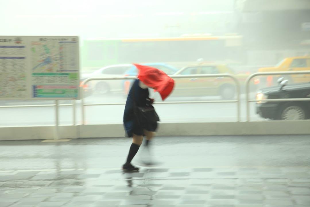 【台風対策】風に強い!おすすめの折りたたみ傘15選