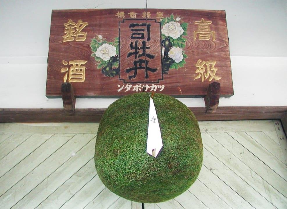 土佐の風土を感じる!女性にもオススメな『司牡丹』の辛口日本酒を堪能したい!