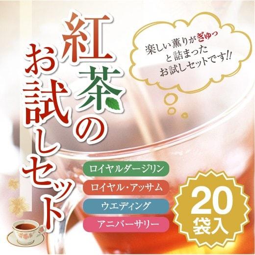 【澤井珈琲】 紅茶のお試しセット