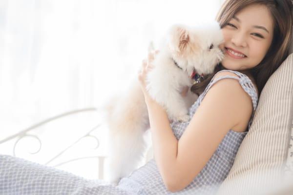 ペットの消臭対策|犬・猫用におすすめ人気の消臭剤6選