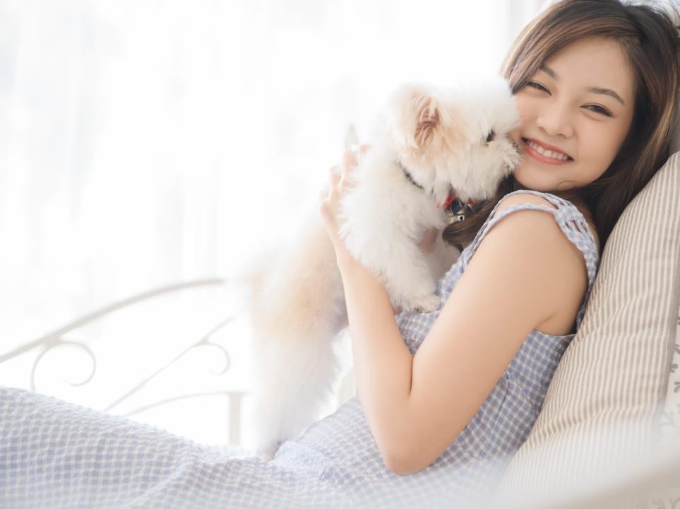 ペットの消臭対策 犬・猫用におすすめ人気の消臭剤6選