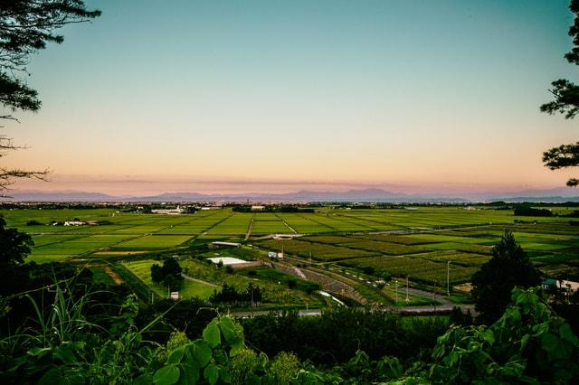 新潟県の田園風景