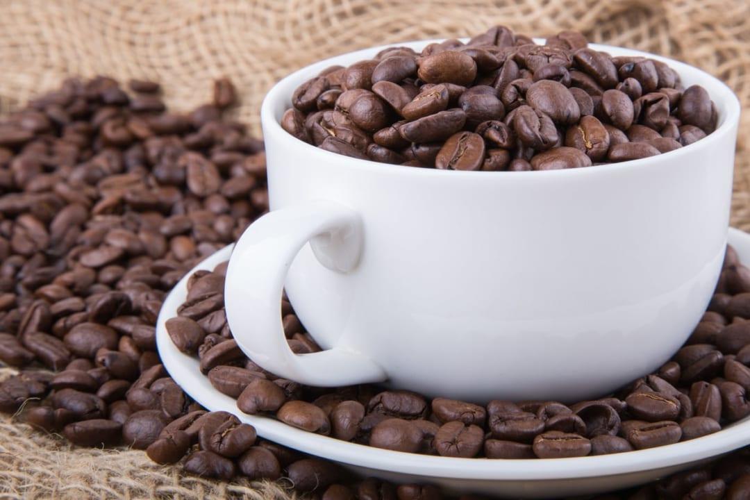 「ジャコウネココーヒー」って知ってる?最高級豆で楽しむ上質な家時間