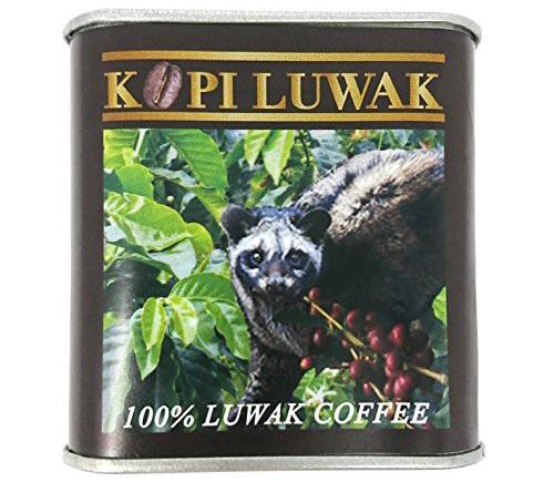インドネシア産 レギュラーコーヒー 豆 コピ・ルアク KOPI LUWAK 50g