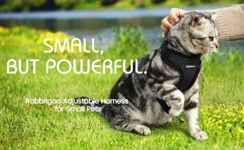 Rabbitgoo 猫用ハーネス