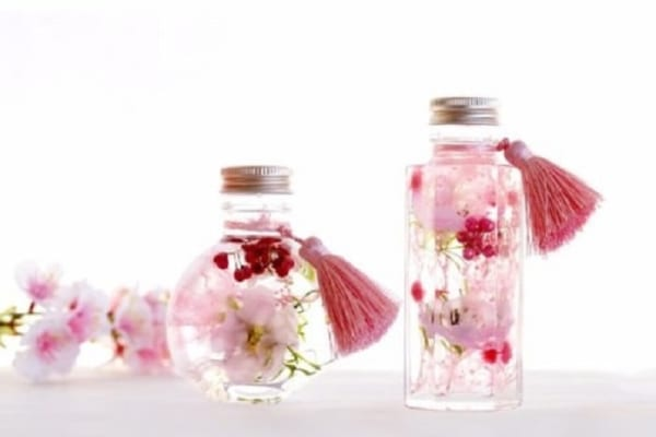 【今日は何の日?】自宅でプチお花見!手のひらサイズの飾れる桜が可愛い!
