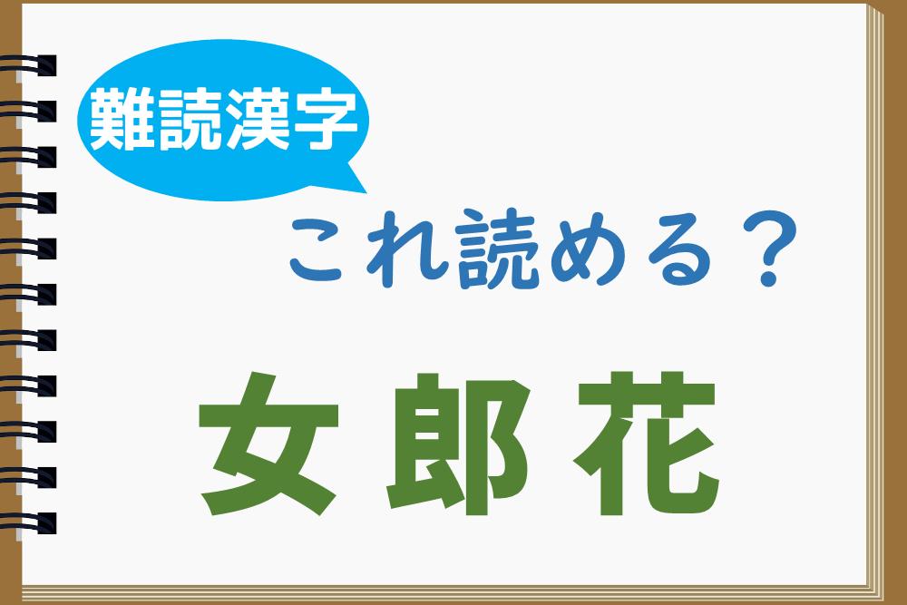 「女郎花」はどう読む?もちろん「じょろうばな」ではありません!