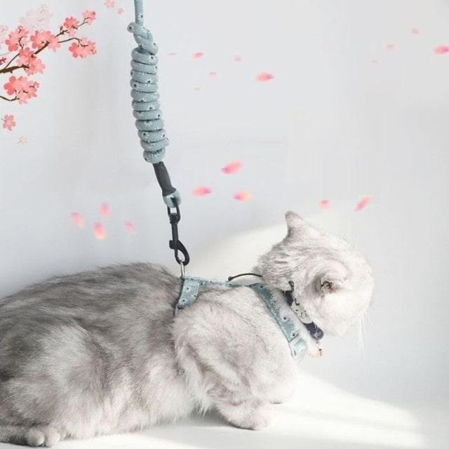 花柄&チェリー柄 猫用ハーネスリード
