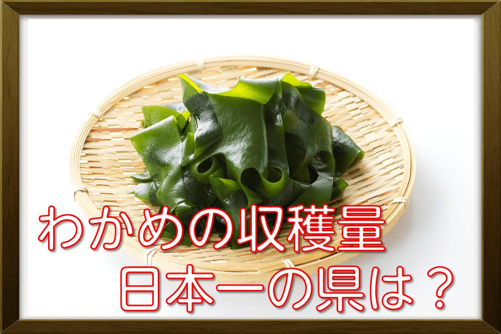 わかめの収穫量日本一の県は?